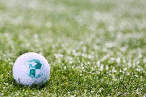 gewerbe golfclub zollmuehle golfball 300x200 - Golfclub Zollmühle
