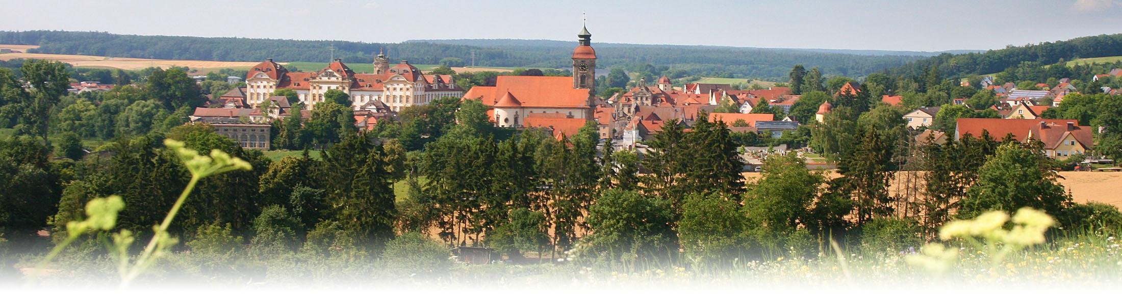 Panorama von Ellingen